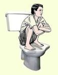 Pedestal Squat Toilet