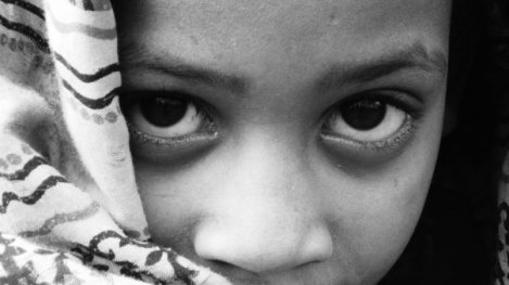 A beautiful child Shepherd, looking at me cautiously, Christmas day 1999