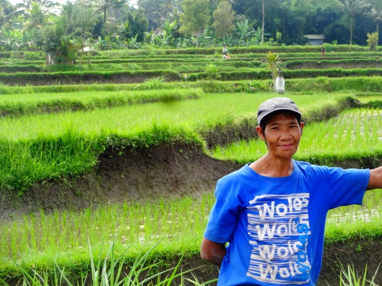 Local Rice farmer near Ubud