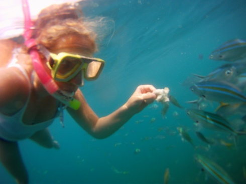 food time fish